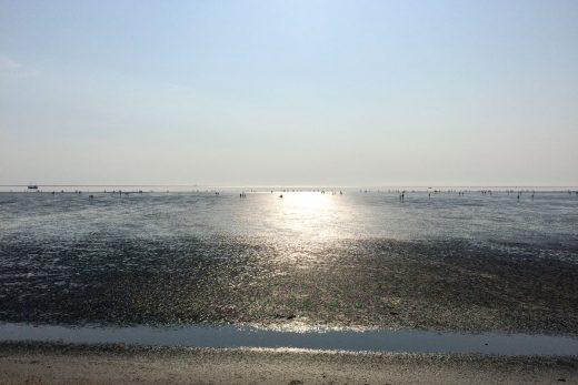 Büsum – vom Rentnerort zum stylischen Seebad